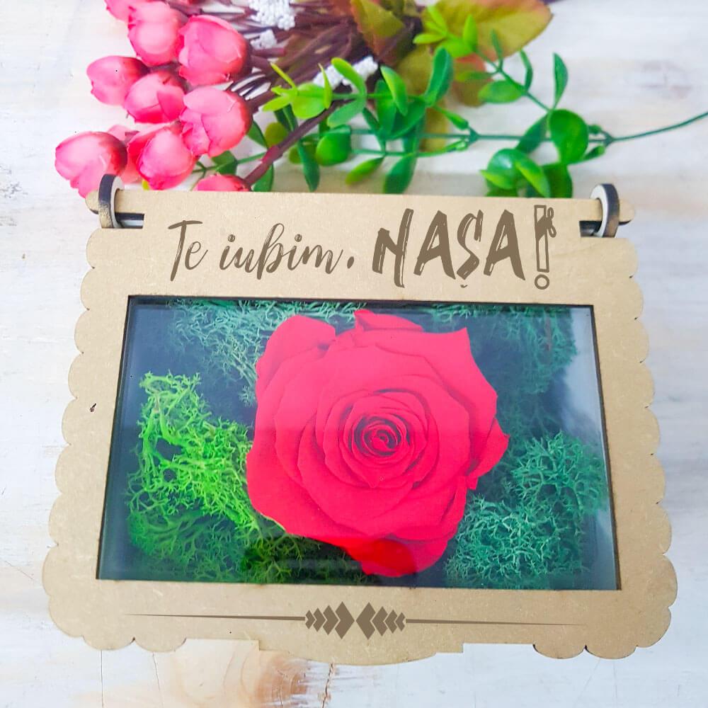 cutie cadou nasa aranjament trandafir criogenat